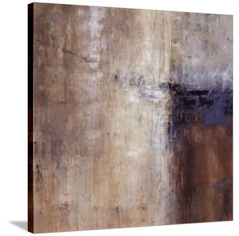 Phantom Rain-Jodi Maas-Stretched Canvas Print