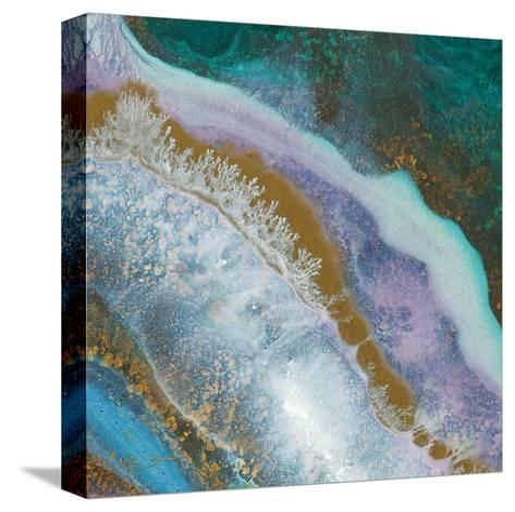 Blue Marble D-Jay Zinn-Stretched Canvas Print