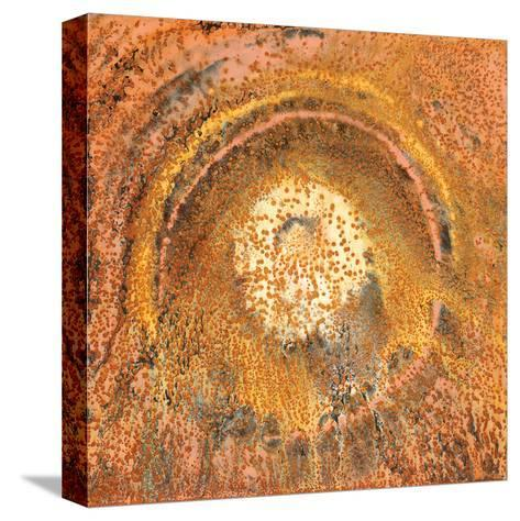 Circle of Tears-Jay Zinn-Stretched Canvas Print
