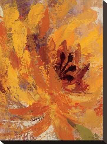 Fiery Dahlias I Crop-Wild Apple Portfolio-Stretched Canvas Print
