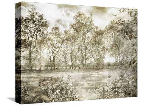 Hyde Park Ii-Golie Miamee-Stretched Canvas Print