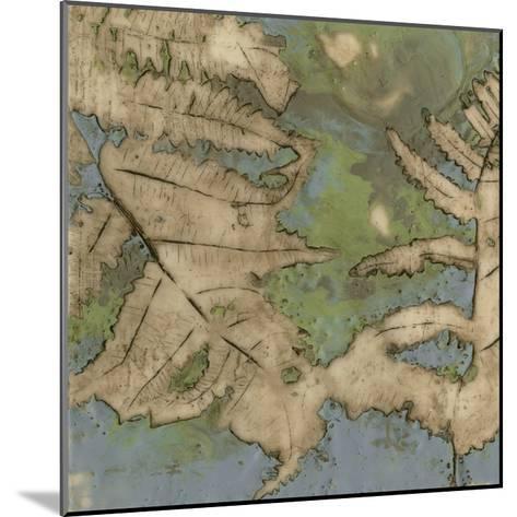 Fern Lake II-Jennifer Goldberger-Mounted Premium Giclee Print