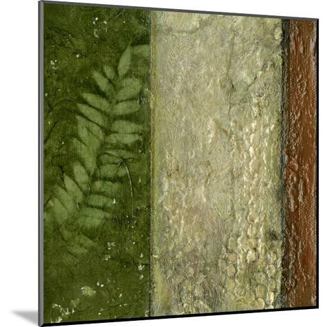 Earthen Textures II-Beverly Crawford-Mounted Premium Giclee Print