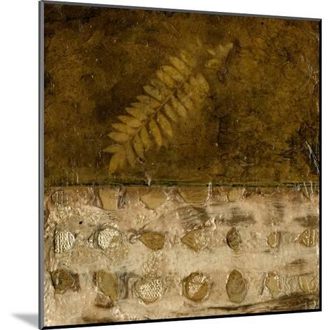Earthen Textures IX-Beverly Crawford-Mounted Premium Giclee Print