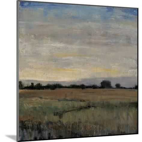 Horizon at Dusk II-Tim OToole-Mounted Premium Giclee Print