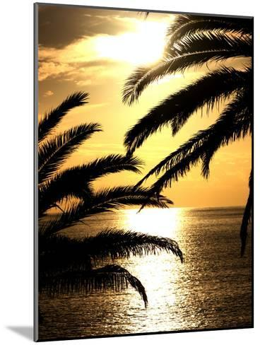 Sunset With Palm Leafs Travel-Wonderful Dream-Mounted Art Print