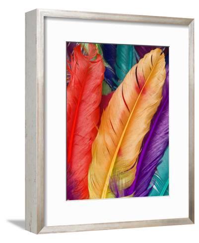 Colorful Bird Feather-Wonderful Dream-Framed Art Print