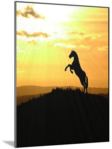 Horse Animal Farm Sunset-Wonderful Dream-Mounted Art Print