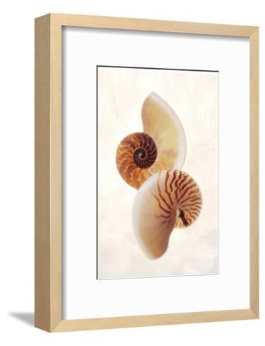 Nautilus-Glen and Gayle Wans-Framed Art Print