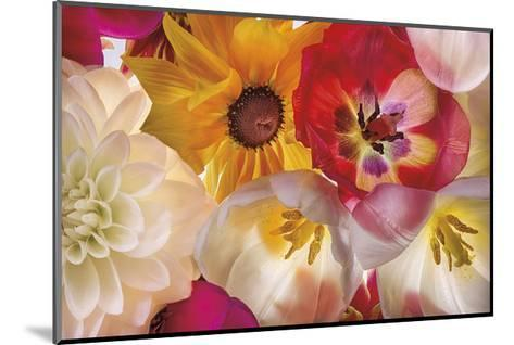 When Flowers Talk-Harold Davis-Mounted Giclee Print