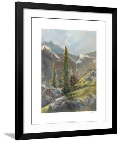 Rocky Hillside I-Ethan Harper-Framed Art Print