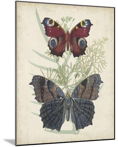 Butterflies & Ferns III-Vision Studio-Mounted Giclee Print