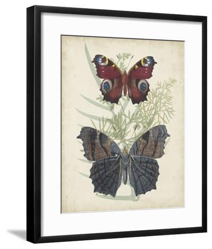Butterflies & Ferns III-Vision Studio-Framed Art Print