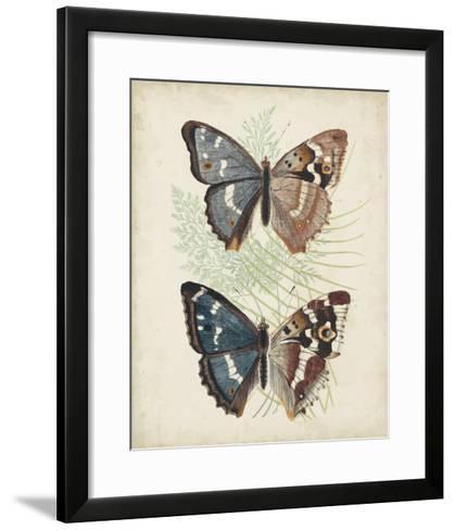 Butterflies & Ferns IV-Vision Studio-Framed Art Print