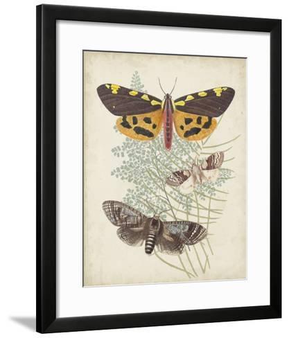 Butterflies & Ferns VI-Vision Studio-Framed Art Print