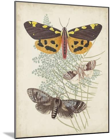 Butterflies & Ferns VI-Vision Studio-Mounted Giclee Print