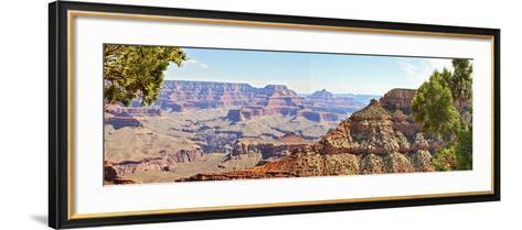 Grand Canyon Panorama IV-Sylvia Coomes-Framed Art Print