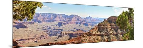 Grand Canyon Panorama IV-Sylvia Coomes-Mounted Art Print