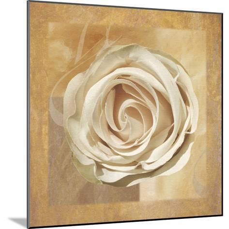 Warm Rose II-Lucy Meadows-Mounted Giclee Print
