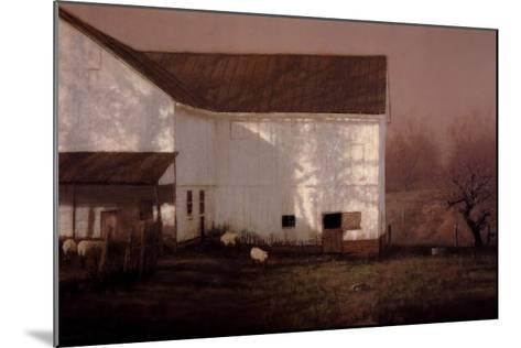 Tree Shadows-Raymond Knaub-Mounted Art Print