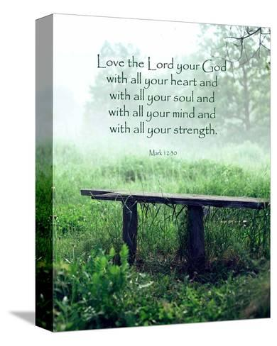 Mark 12:30 Love the Lord Your God (Bench)-Inspire Me-Stretched Canvas Print