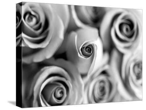 Monotone Bouquet-Tracey Telik-Stretched Canvas Print