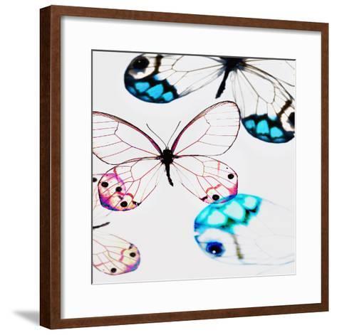 Glasswings-Tracey Telik-Framed Art Print