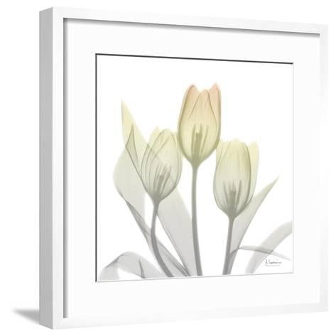 Sunday Morning Tulips Two-Albert Koetsier-Framed Art Print