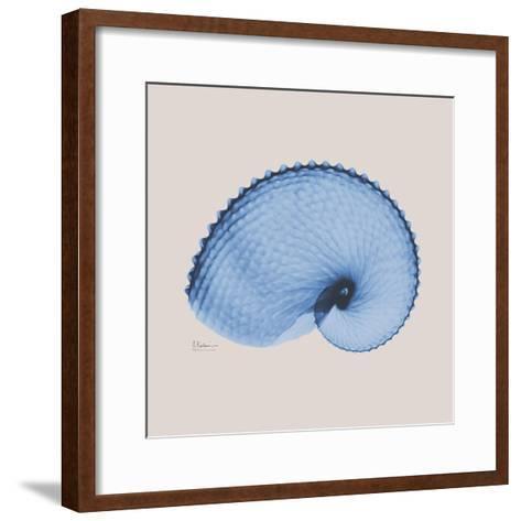Ultramarine Argonaut-Albert Koetsier-Framed Art Print