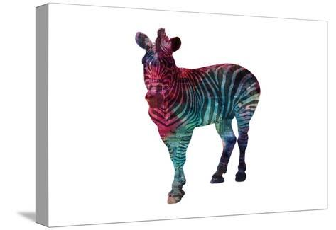 Stripes Of Colors-Sheldon Lewis-Stretched Canvas Print