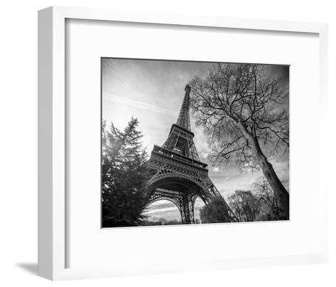 Eiffel Tower With Tree-St?phane Graciet-Framed Art Print