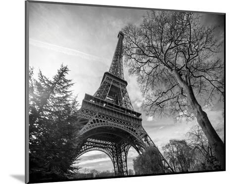 Eiffel Tower With Tree-St?phane Graciet-Mounted Art Print
