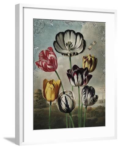 Ornamental - Thierry-Stephanie Monahan-Framed Art Print