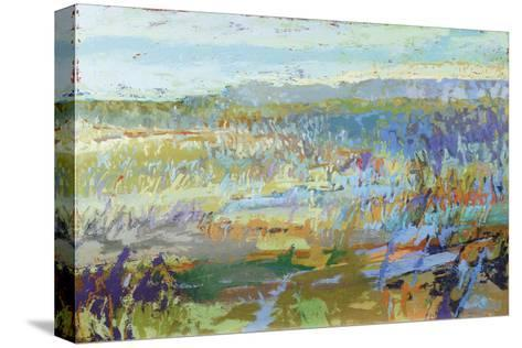 Southward-Jane Schmidt-Stretched Canvas Print