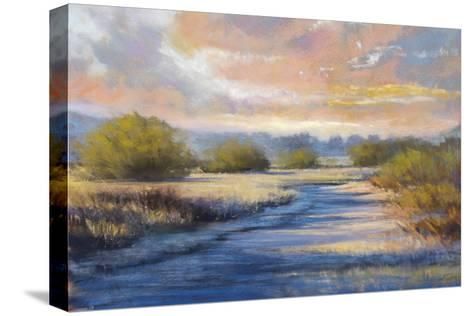 The Way Home-Amanda Houston-Stretched Canvas Print