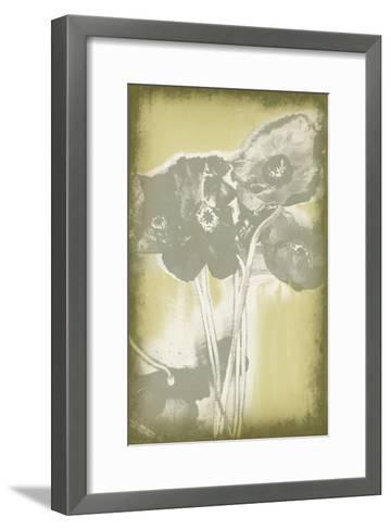 Poppies in Relief II-Jennifer Goldberger-Framed Art Print