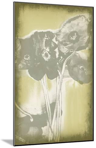Poppies in Relief II-Jennifer Goldberger-Mounted Premium Giclee Print