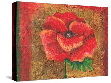 Red Poppy-May May-Stretched Canvas Print