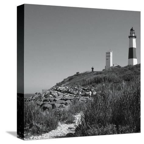 Landscape 2-Lauren Gibbons-Stretched Canvas Print