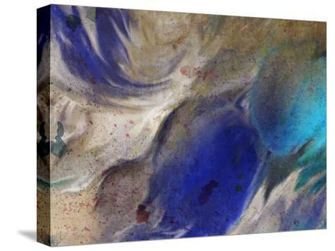 In the Blue 3-Kimberly Allen-Stretched Canvas Print