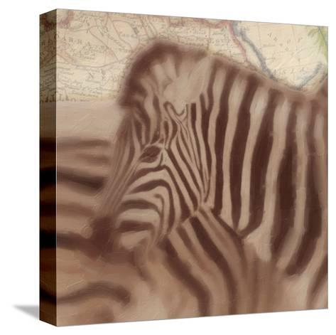Zebra-Taylor Greene-Stretched Canvas Print