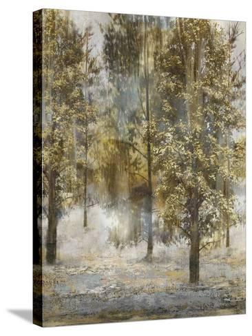 Tree Dreamscape III-Paul Duncan-Stretched Canvas Print