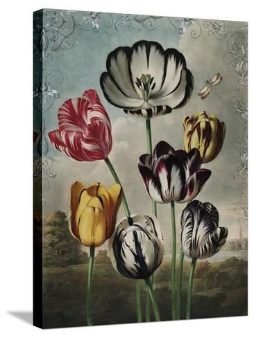 Ornamental - Thierry-Stephanie Monahan-Stretched Canvas Print