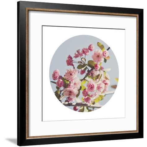 Spring Morning - Sphere-Irene Suchocki-Framed Art Print