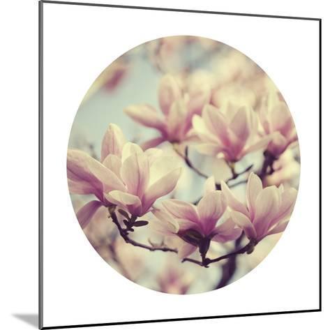 Spring Dream - Sphere-Irene Suchocki-Mounted Giclee Print