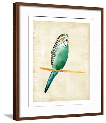 Fanciful Birds II-Chariklia Zarris-Framed Art Print