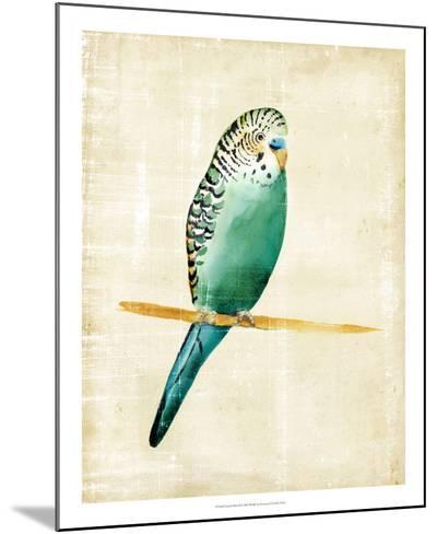 Fanciful Birds II-Chariklia Zarris-Mounted Giclee Print