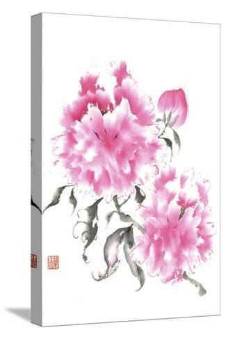 Peonie Blossoms I-Nan Rae-Stretched Canvas Print