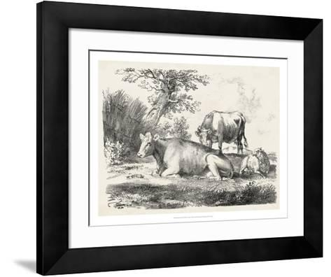 Rural Charms IV-Unknown-Framed Art Print