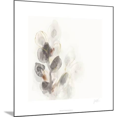 Seed Pod I-June Erica Vess-Mounted Limited Edition